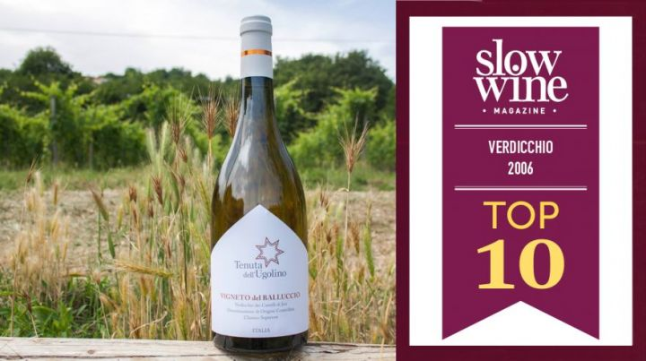Slow Wine Magazine Verdicchio 2006 TOP 10