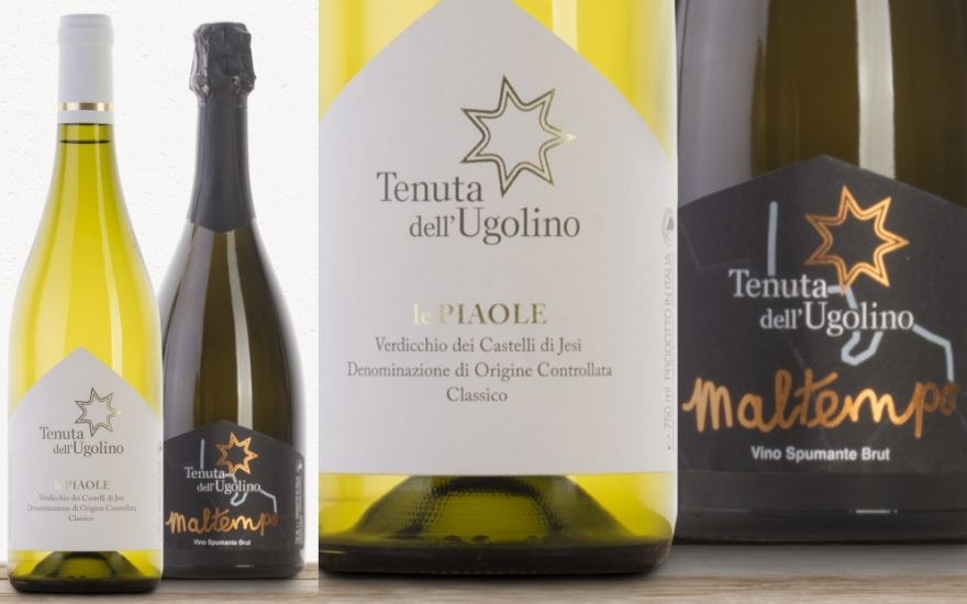 Here are the new arrivals of Tenuta dell'Ugolino